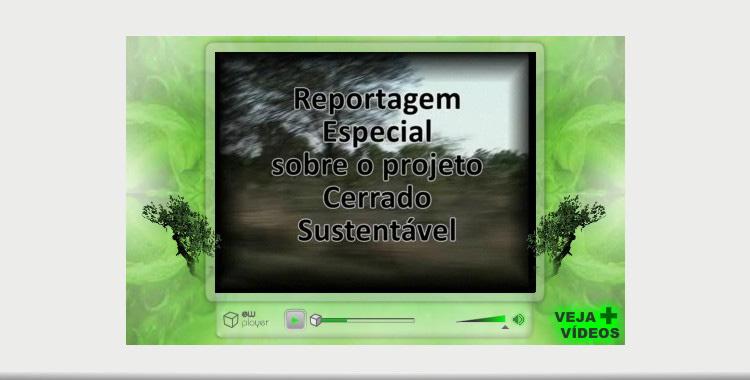 Cerrado Sustentvel